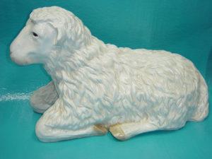 C19d.bárány-kecske