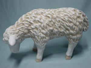 C20a.bárány-kecske