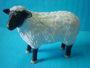 C20c.bárány-kecske
