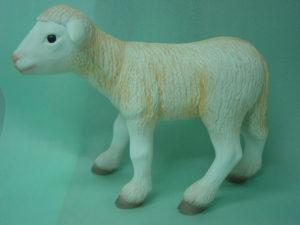 C379.bárány
