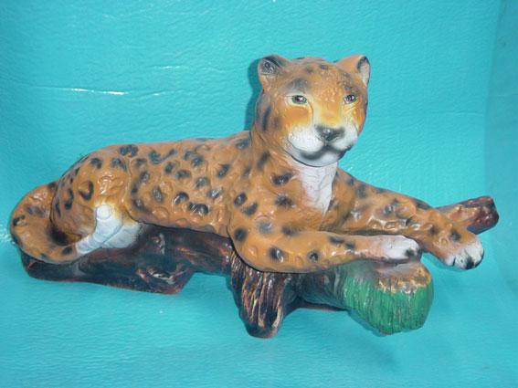 C75.leopárd