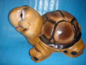 C107a.teknősbéka