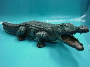 C120.krokodil