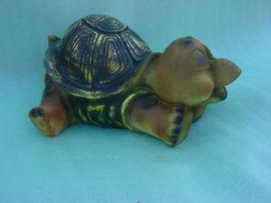 C165.teknősbéka