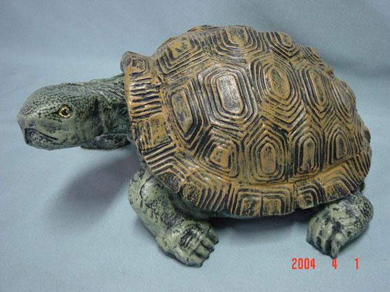 C320a.teknősbéka