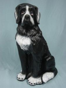 C11a.kutya