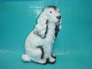 C12.kutya