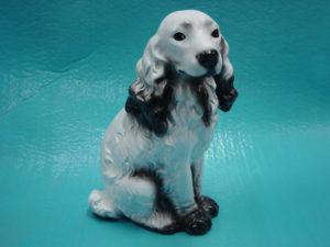 C12a.kutya