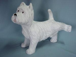C123.kutya
