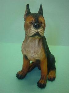 C142.kutya