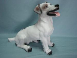 C143.kutya