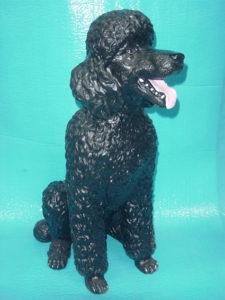 C223b.kutya