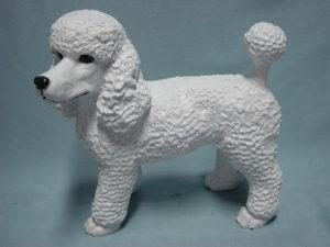 C315.kutya