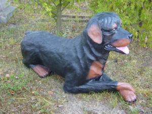 C409.kutya