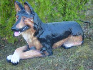 C410.kutyák