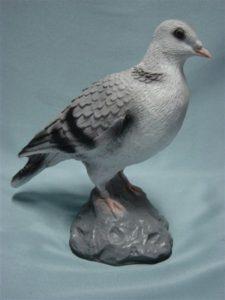 C21x.madár