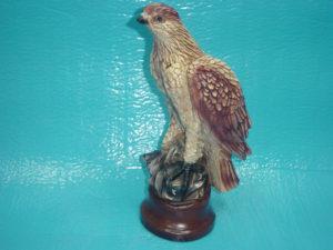 C91.madár