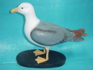 C291.madár