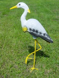 C353.madár